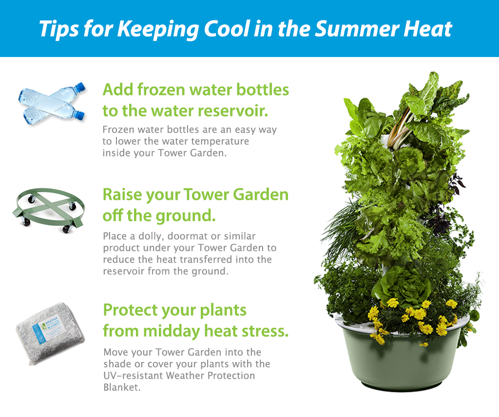 Tower Garden summer tips