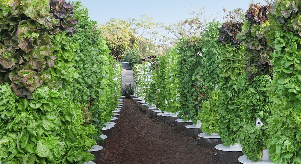 7 Inspiring Public Uses of Tower Garden