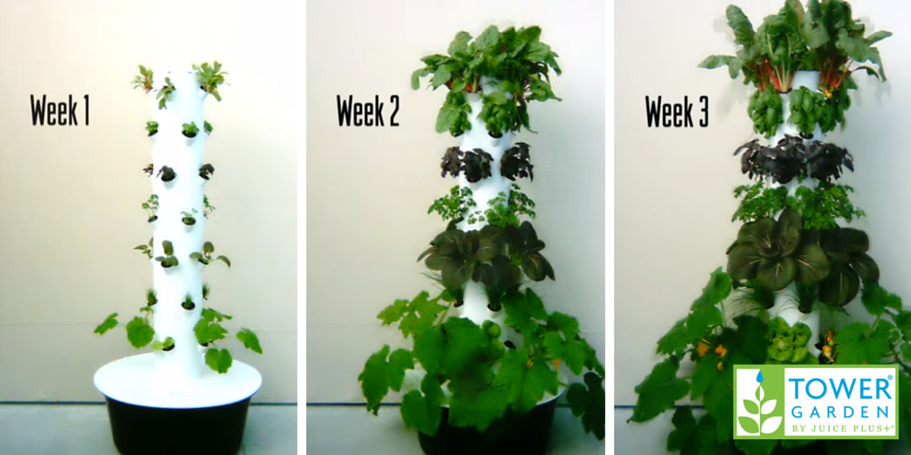 Tower Garden Uses As Much As 98% Less Water. Ideas