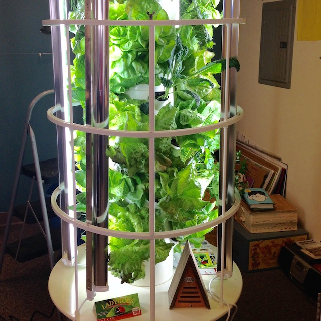 20 Places You Can Tower Garden [Photos]