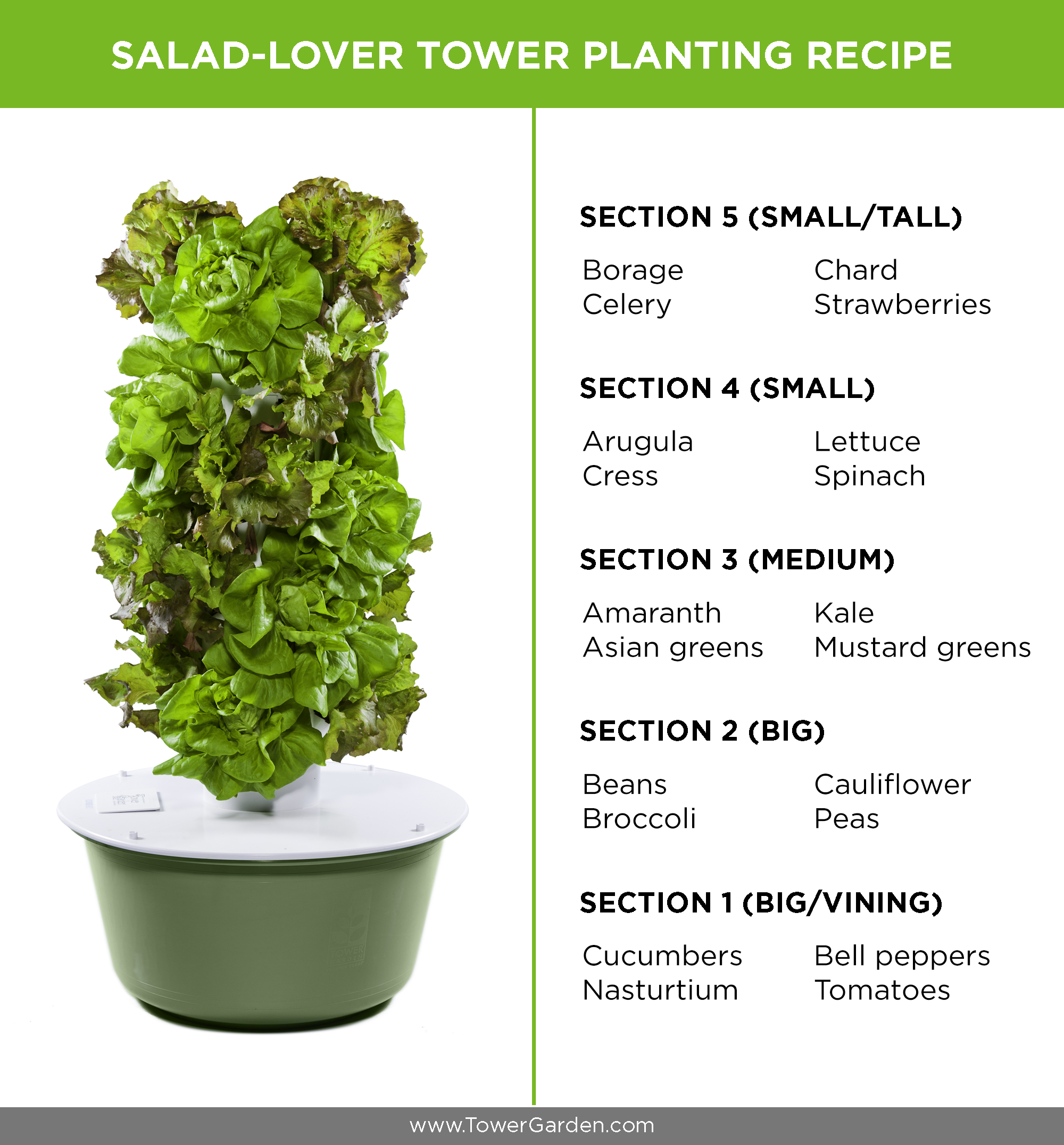 how to arrange a salad lover tower garden - Tower Garden