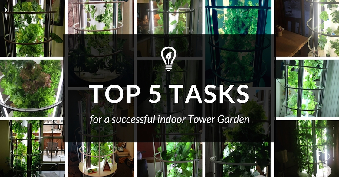 How To Ensure Your Indoor Tower Garden Is A Success