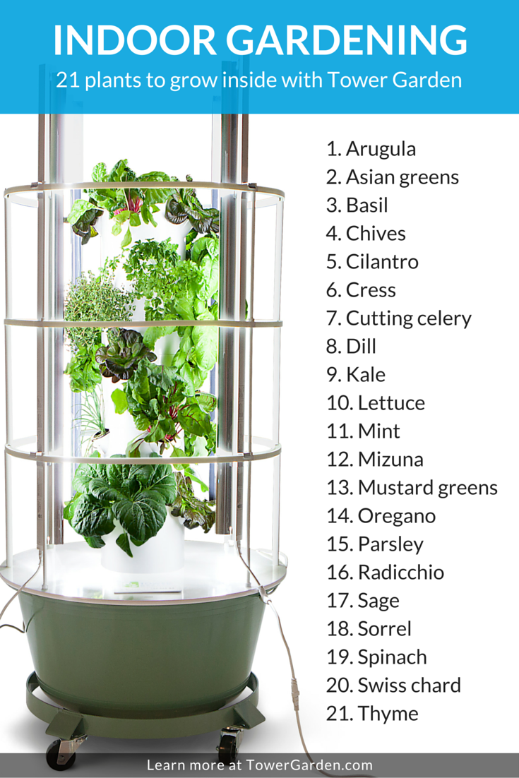 but there are several non fruiting types of plants you can grow including the following vegetables and herbs this list isnt comprehensiveits just to - Tower Garden