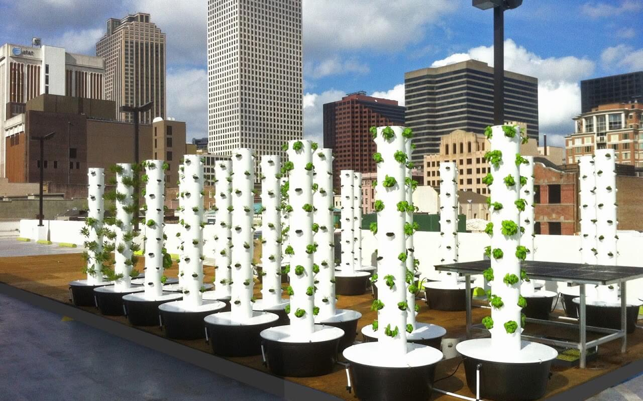 10 Urban Farms Transforming City Rooftops
