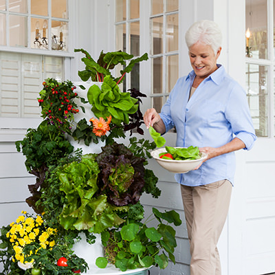 grow up to 30 more healthy food 3x faster - Tower Garden