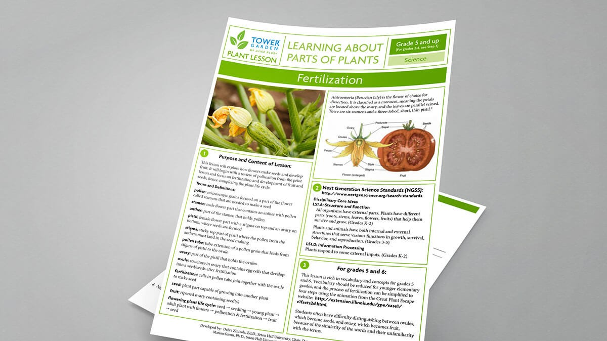 Lesson Plans for School Tower Gardens Free Educator Resources – Gardening Lesson Plans