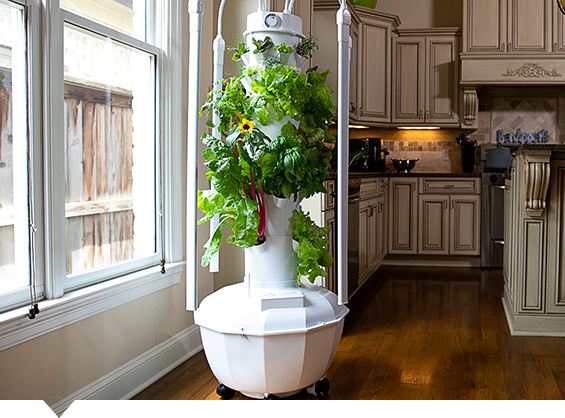 Compare Our Indoor Indoor Outdoor Growing Systems Tower Garden